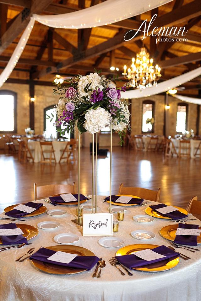 the-springs-anna-wedding-tuscany-hill-stone-hall-purple-family-omega-psi-phi-aleman-photos-061