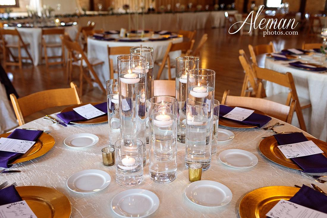 the-springs-anna-wedding-tuscany-hill-stone-hall-purple-family-omega-psi-phi-aleman-photos-062