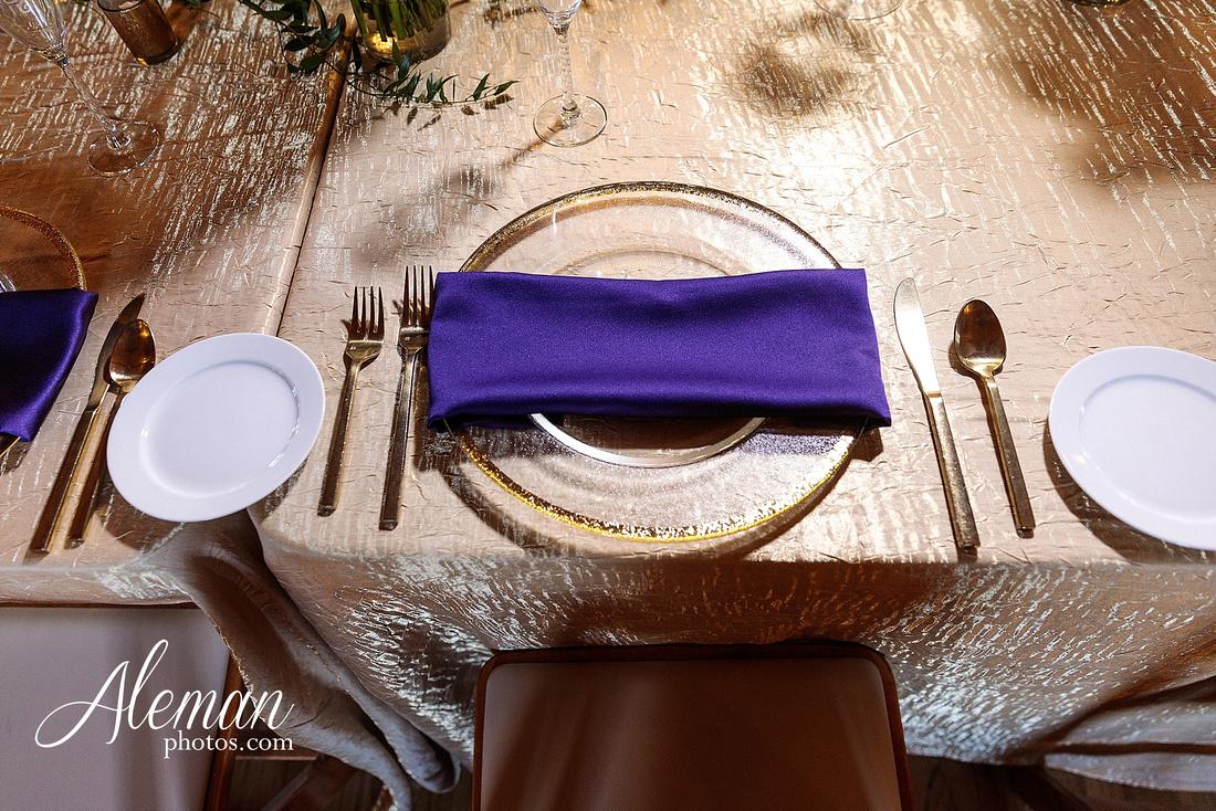 the-springs-anna-wedding-tuscany-hill-stone-hall-purple-family-omega-psi-phi-aleman-photos-065