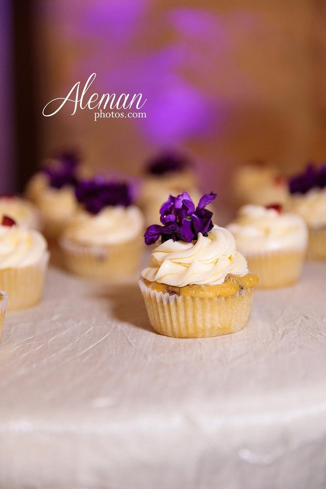 the-springs-anna-wedding-tuscany-hill-stone-hall-purple-family-omega-psi-phi-aleman-photos-086
