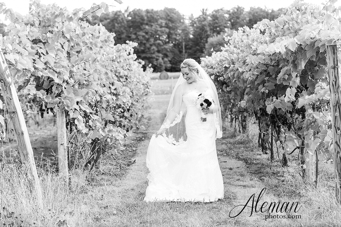destination-wedding-michigan-bark-river-dallas-fort-worth-vineyard-outdoor-ceremony-lake-pond-sunset-sunrise-winery-grapevine-napa-purple-lesbian-amanda-katy-aleman-photos-027