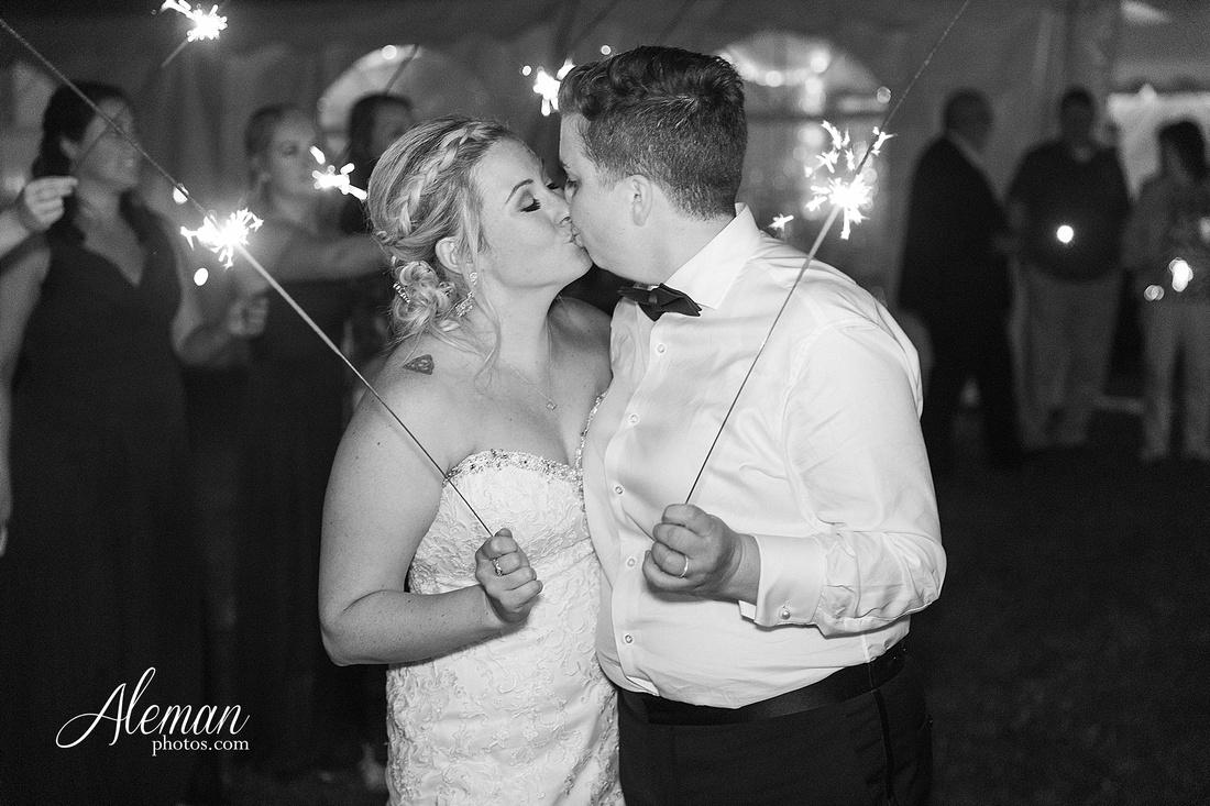 destination-wedding-michigan-bark-river-dallas-fort-worth-vineyard-outdoor-ceremony-lake-pond-sunset-sunrise-winery-grapevine-napa-purple-lesbian-amanda-katy-aleman-photos-073