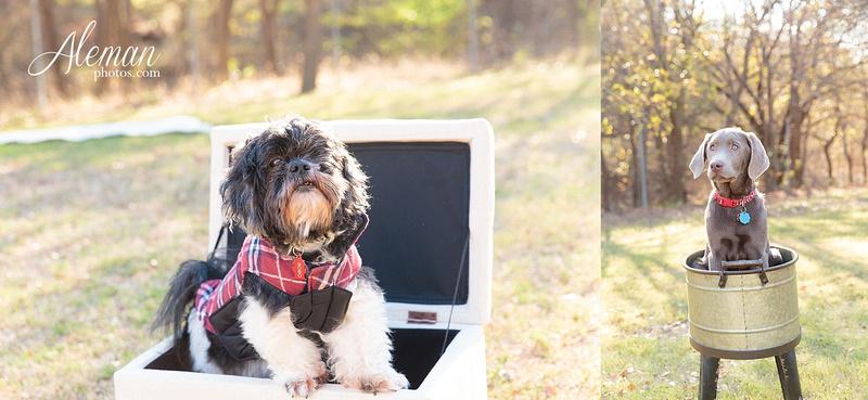 Dallas-Family-Photographer-aleman-photos-carrollton-outdoor-fall 005