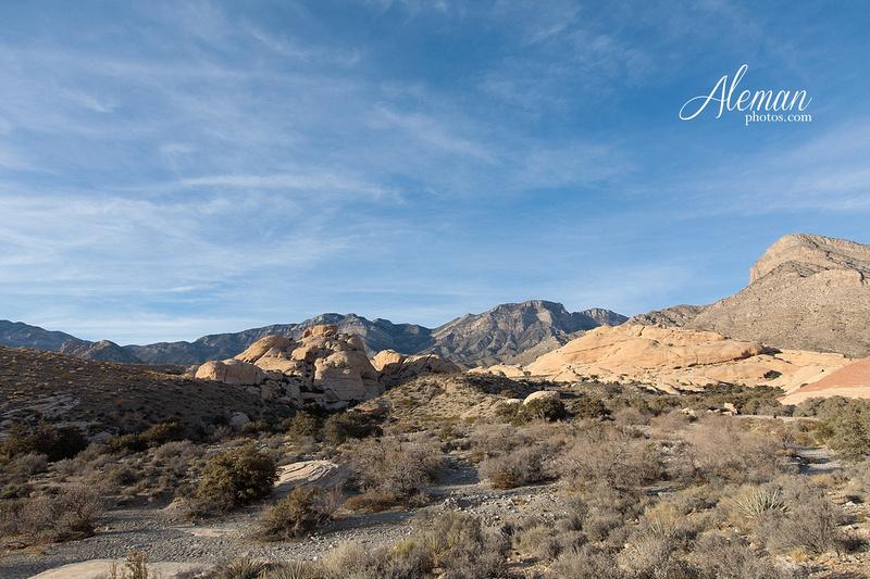 red-rock-canyon-las-vegas-destination-wedding-dallas-aleman-photos -013