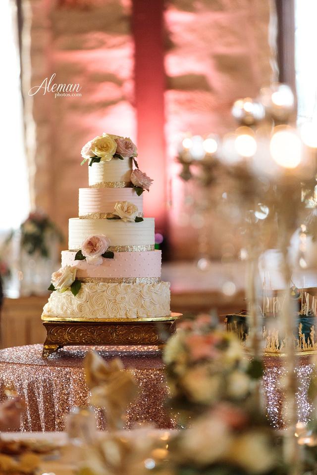 springs-event-wedding-mckinney-outdoor-dallas-dfw-aleman-photos-kelsey054